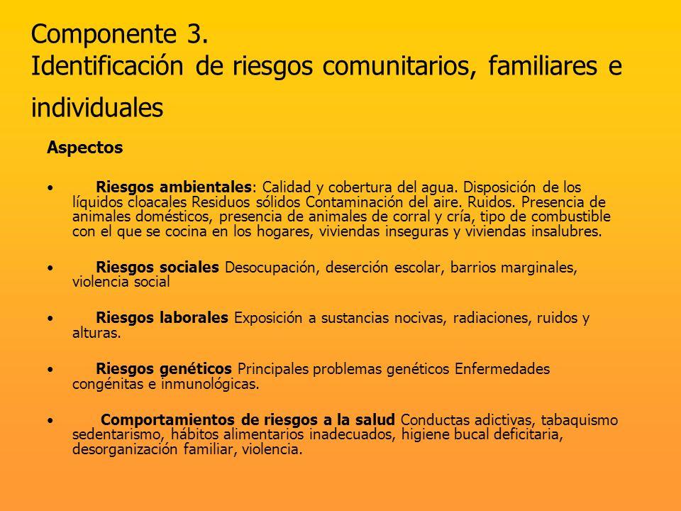 Componente 3. Identificación de riesgos comunitarios, familiares e individuales Aspectos Riesgos ambientales: Calidad y cobertura del agua. Disposició