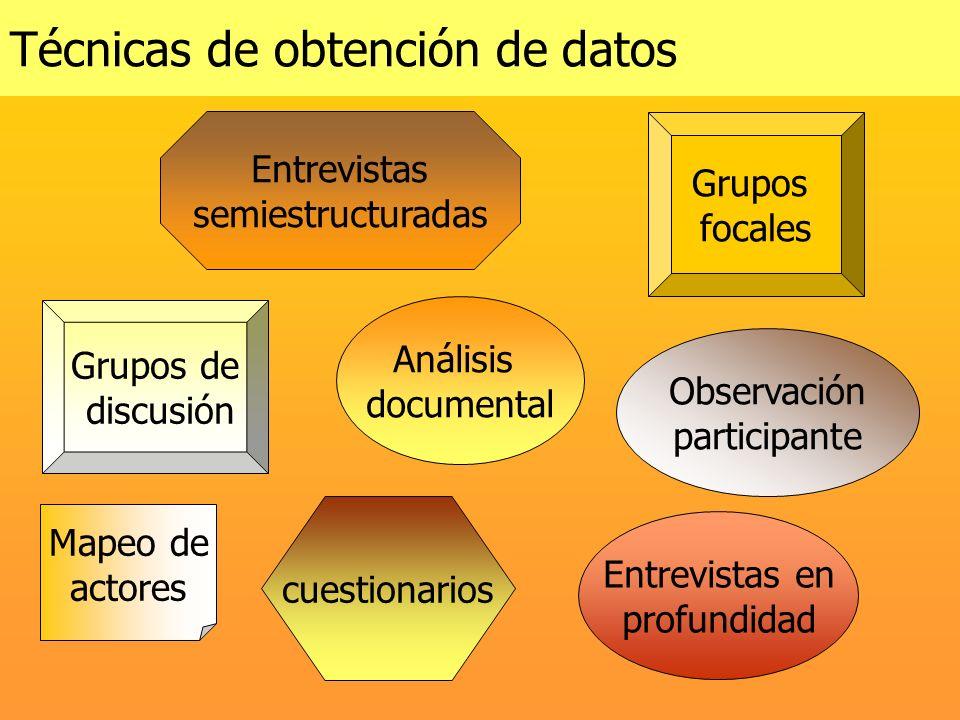 Técnicas de obtención de datos Entrevistas semiestructuradas cuestionarios Mapeo de actores Grupos de discusión Grupos focales Observación participant