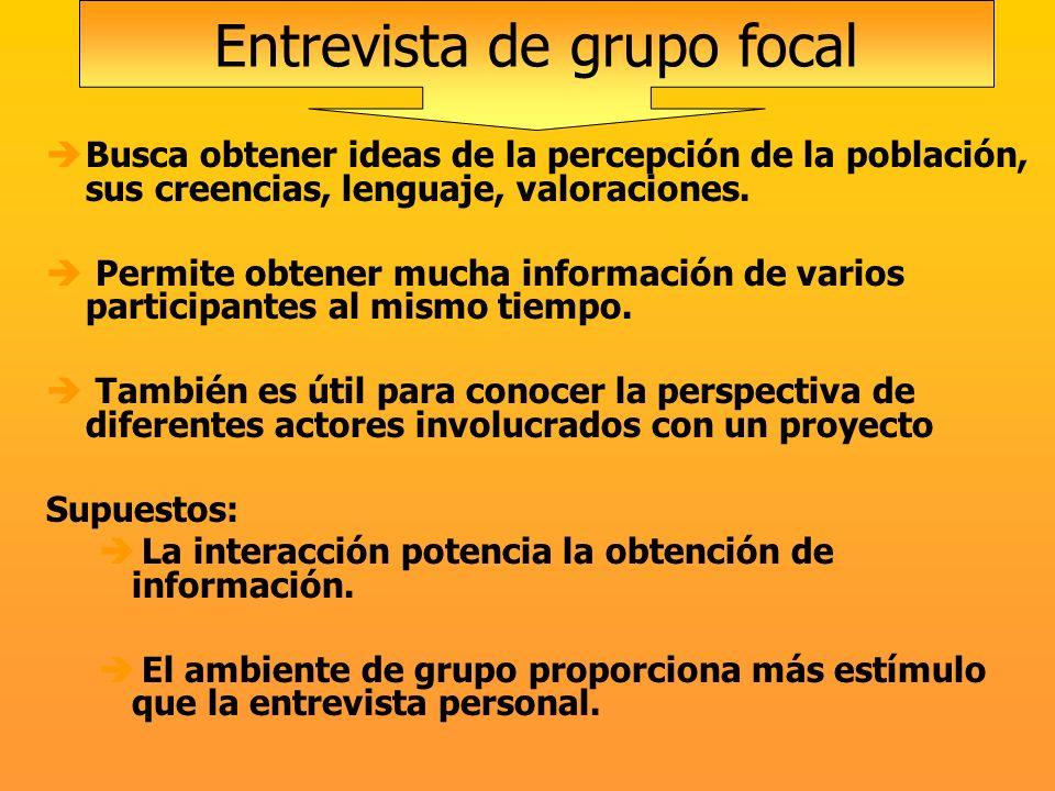 Busca obtener ideas de la percepción de la población, sus creencias, lenguaje, valoraciones. Permite obtener mucha información de varios participantes