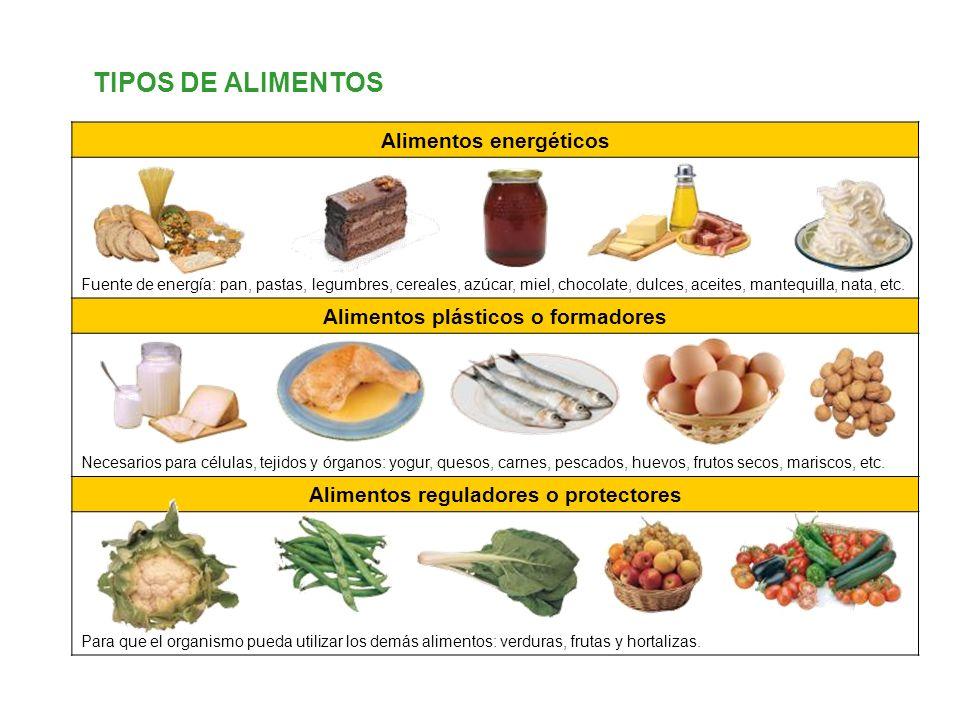 TIPOS DE ALIMENTOS Alimentos energéticos Fuente de energía: pan, pastas, legumbres, cereales, azúcar, miel, chocolate, dulces, aceites, mantequilla, n