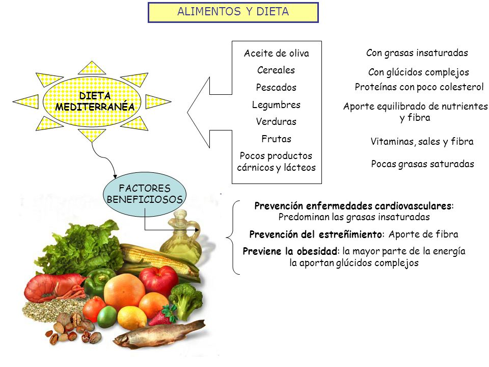 ALIMENTOS Y DIETA DIETA MEDITERRANÉA Aceite de oliva Cereales Pescados Legumbres Verduras Frutas Pocos productos cárnicos y lácteos FACTORES BENEFICIO