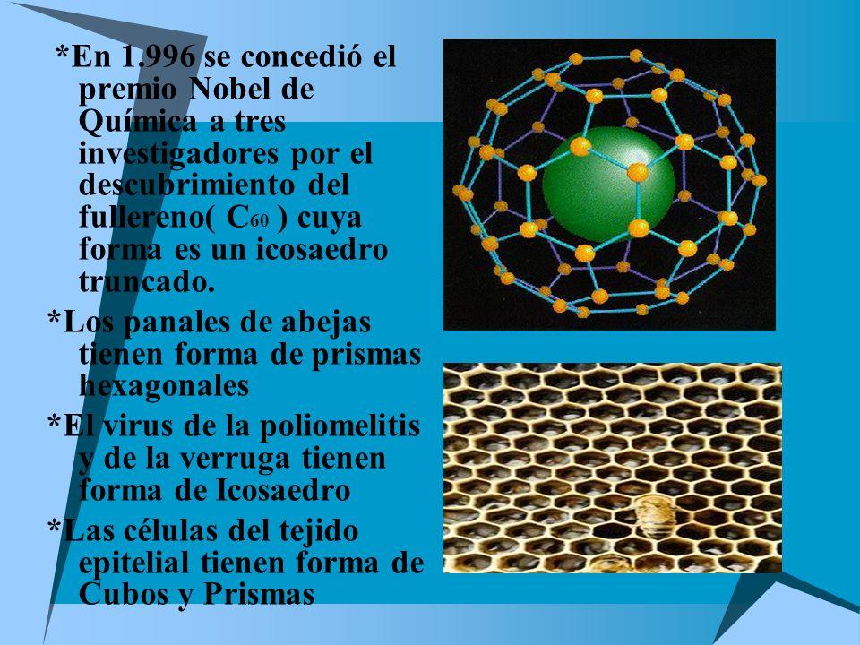*En 1.996 se concedió el premio Nobel de Química a tres investigadores por el descubrimiento del fullereno( C 60 ) cuya forma es un icosaedro truncado