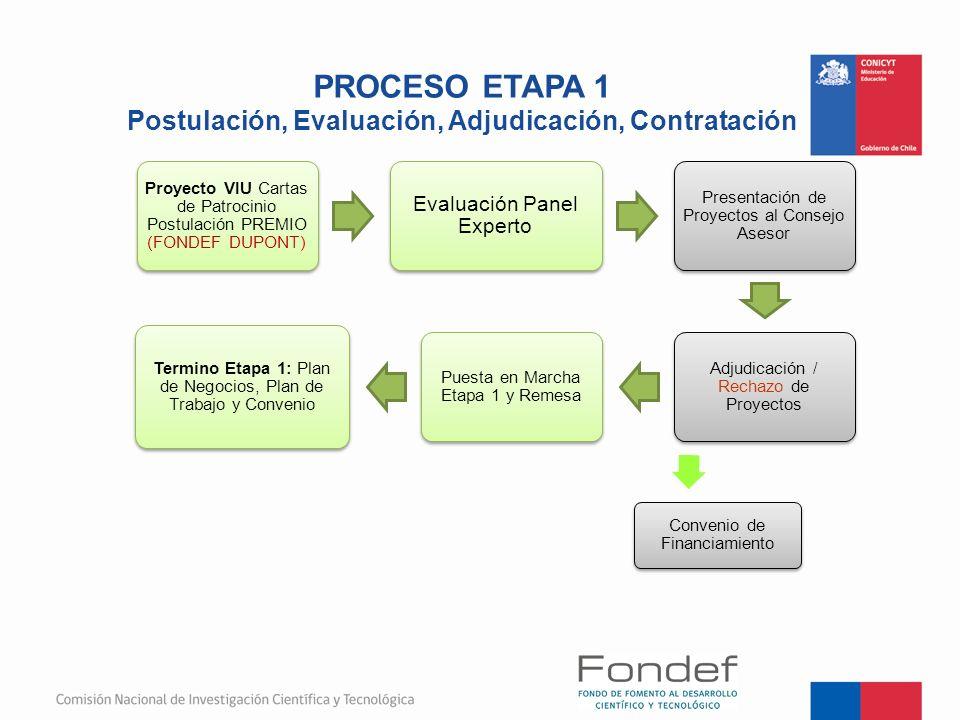 PROCESO ETAPA 1 Postulación, Evaluación, Adjudicación, Contratación Proyecto VIU Cartas de Patrocinio Postulación PREMIO (FONDEF DUPONT) Evaluación Pa