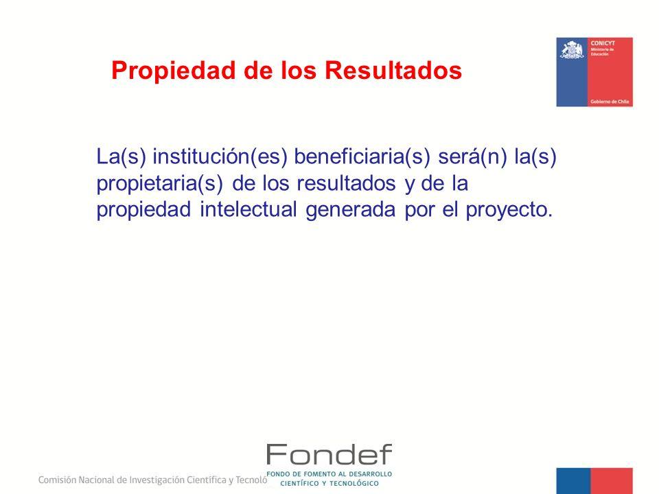 La(s) institución(es) beneficiaria(s) será(n) la(s) propietaria(s) de los resultados y de la propiedad intelectual generada por el proyecto. Propiedad