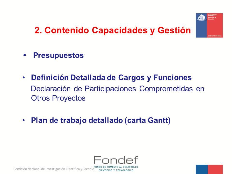 Presupuestos Definición Detallada de Cargos y Funciones Declaración de Participaciones Comprometidas en Otros Proyectos Plan de trabajo detallado (car