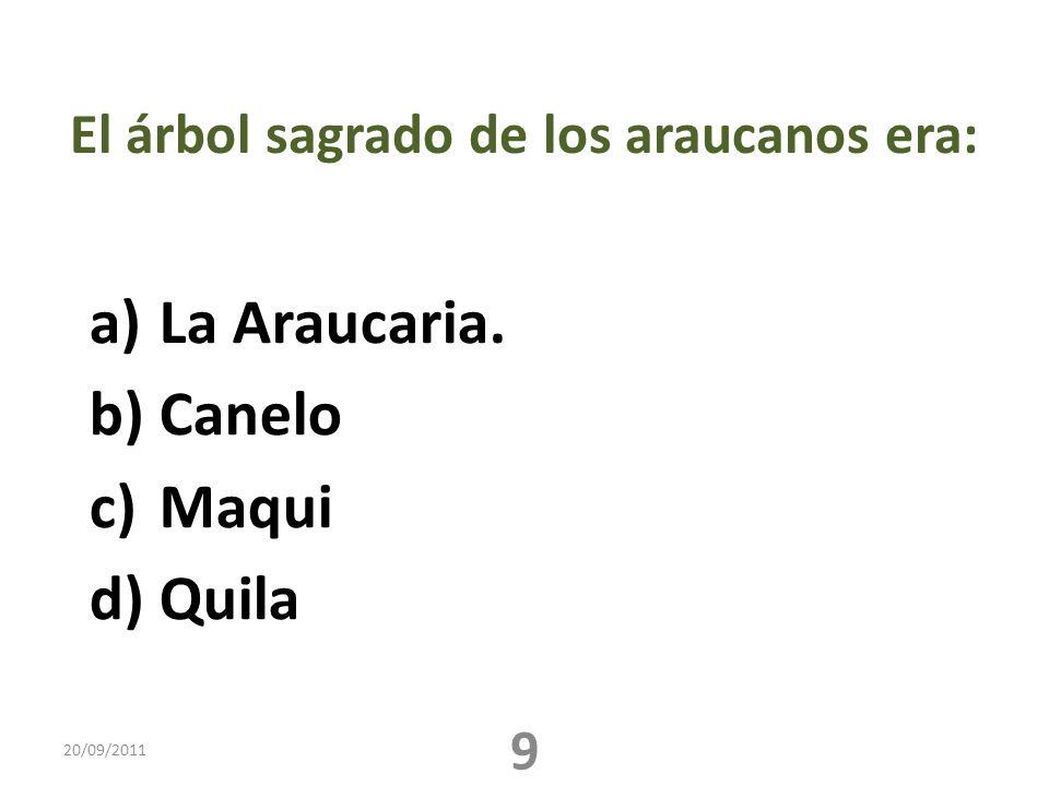 El árbol sagrado de los araucanos era: a)La Araucaria. b)Canelo c)Maqui d)Quila 20/09/2011 9