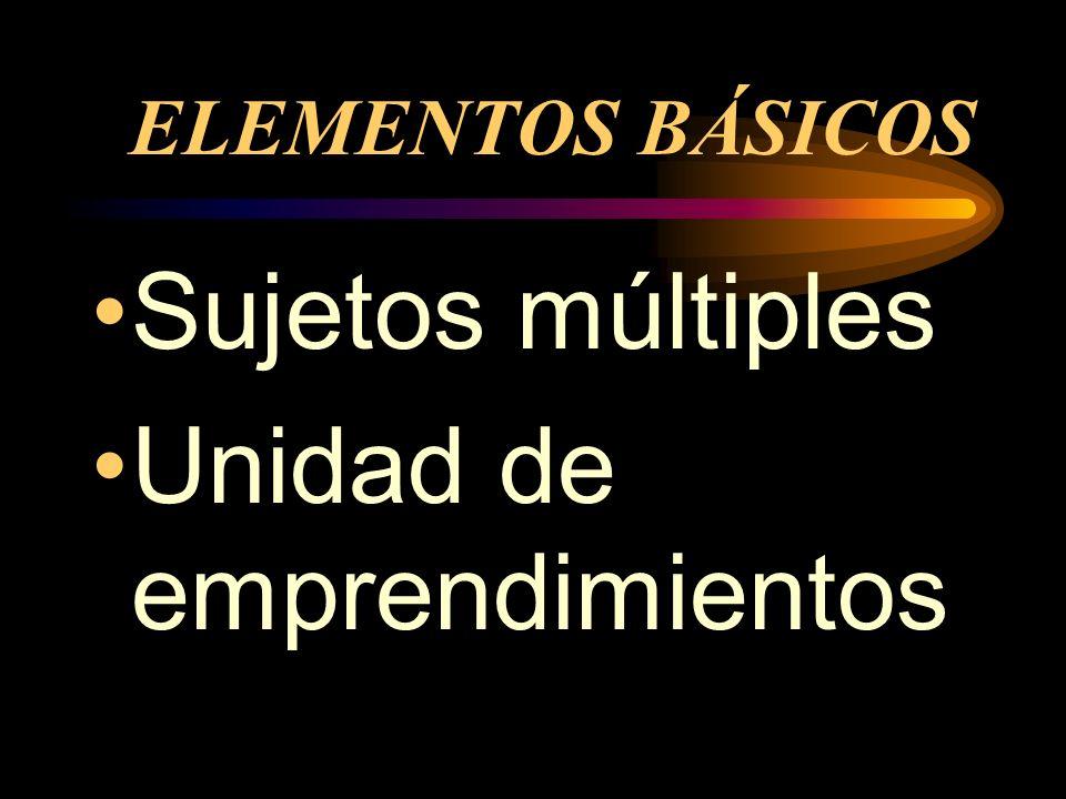 ELEMENTOS BÁSICOS Sujetos múltiples Unidad de emprendimientos