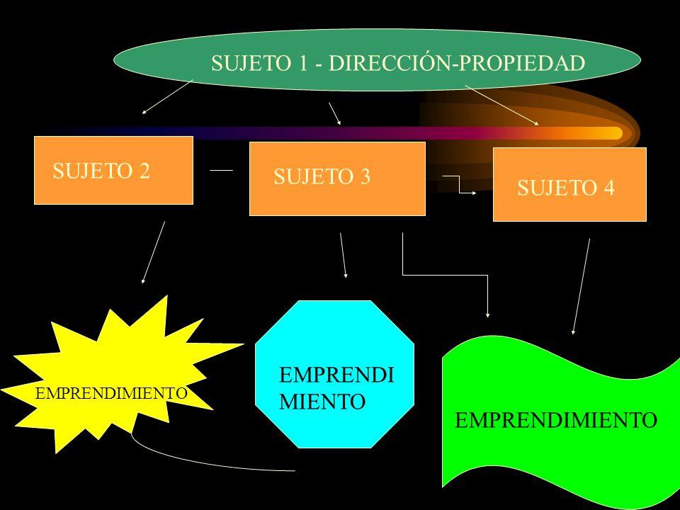 SUJETO 1 - DIRECCIÓN-PROPIEDAD SUJETO 2 SUJETO 3 SUJETO 4 EMPRENDIMIENTO