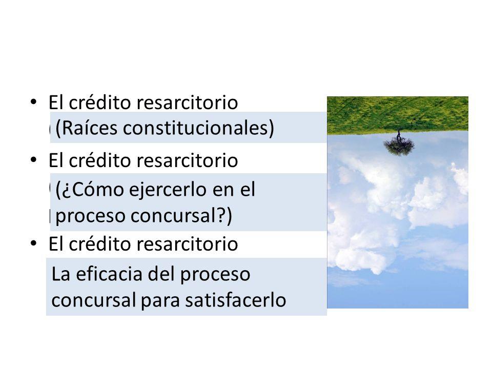 El crédito resarcitorio (Raíces) El crédito resarcitorio (Desarrollo dinámico en el proceso concursal) El crédito resarcitorio (Los frutos) (Raíces co