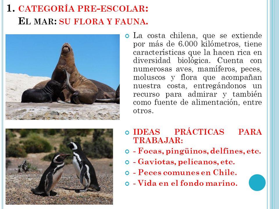 Categoría Segundo Ciclo: 1º Lugar: Cámara digital compacta y un curso de fotografía digital en la Corporación Cultural Lo Barnechea.