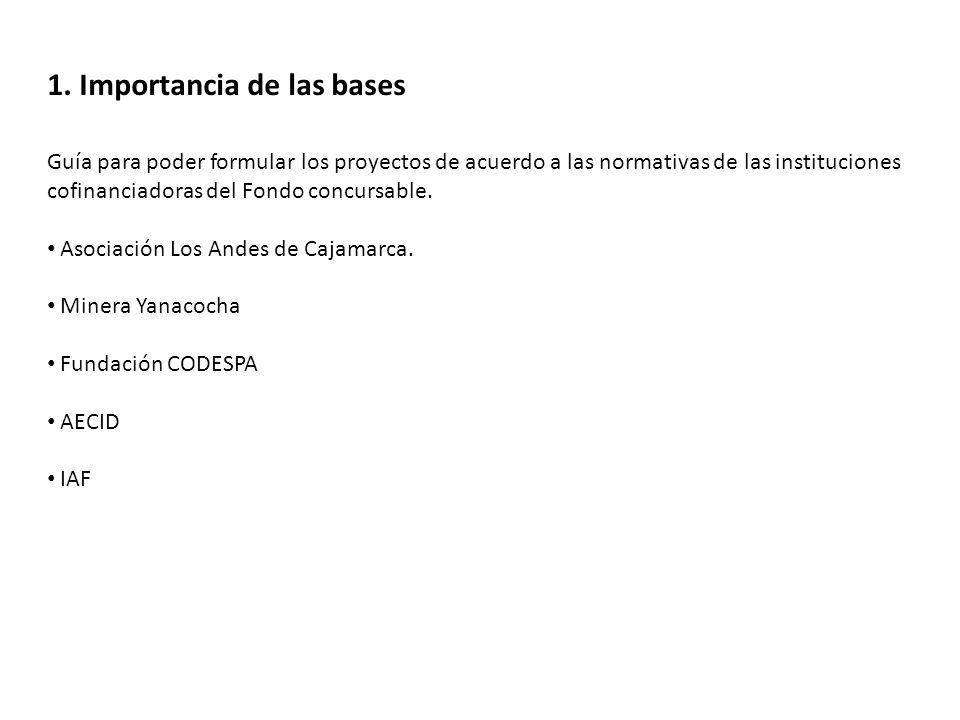 1. Importancia de las bases Guía para poder formular los proyectos de acuerdo a las normativas de las instituciones cofinanciadoras del Fondo concursa
