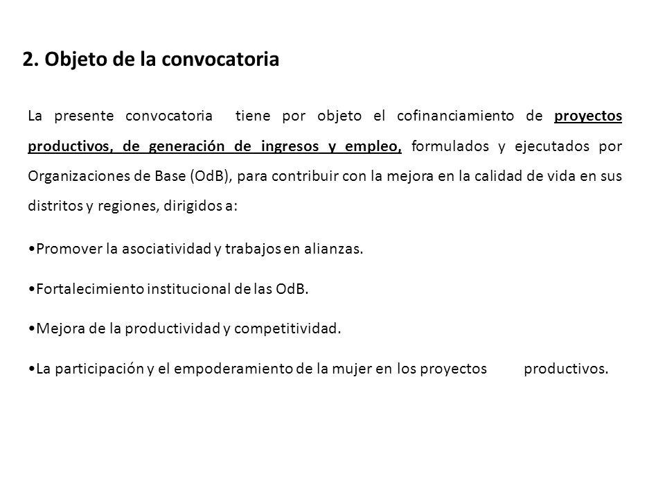 3.Contenidos de los proyectos a cofinanciar 3.1.