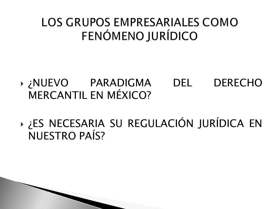 ¿NUEVO PARADIGMA DEL DERECHO MERCANTIL EN MÉXICO? ¿ES NECESARIA SU REGULACIÓN JURÍDICA EN NUESTRO PAÍS?