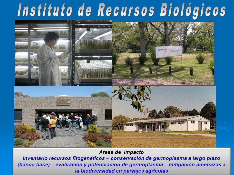 Areas de Impacto Inventario recursos fitogenéticos – conservación de germoplasma a largo plazo (banco base) – evaluación y potenciación de germoplasma