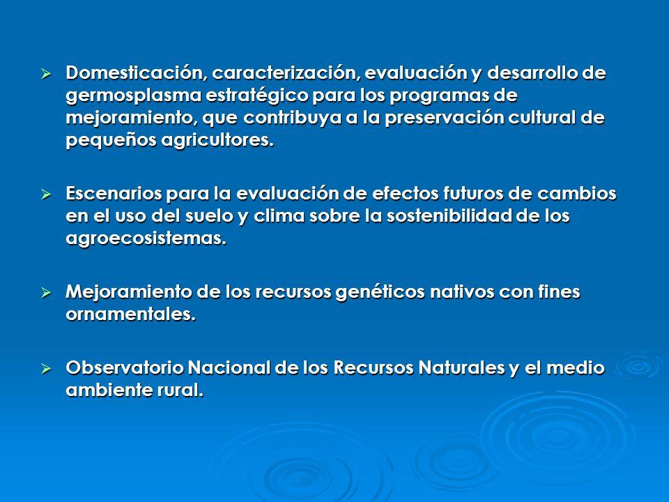 Domesticación, caracterización, evaluación y desarrollo de germosplasma estratégico para los programas de mejoramiento, que contribuya a la preservaci