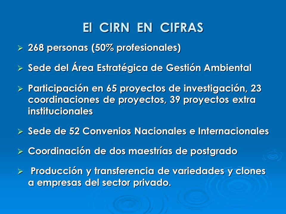 El CIRN EN CIFRAS 268 personas (50% profesionales) 268 personas (50% profesionales) Sede del Área Estratégica de Gestión Ambiental Sede del Área Estra