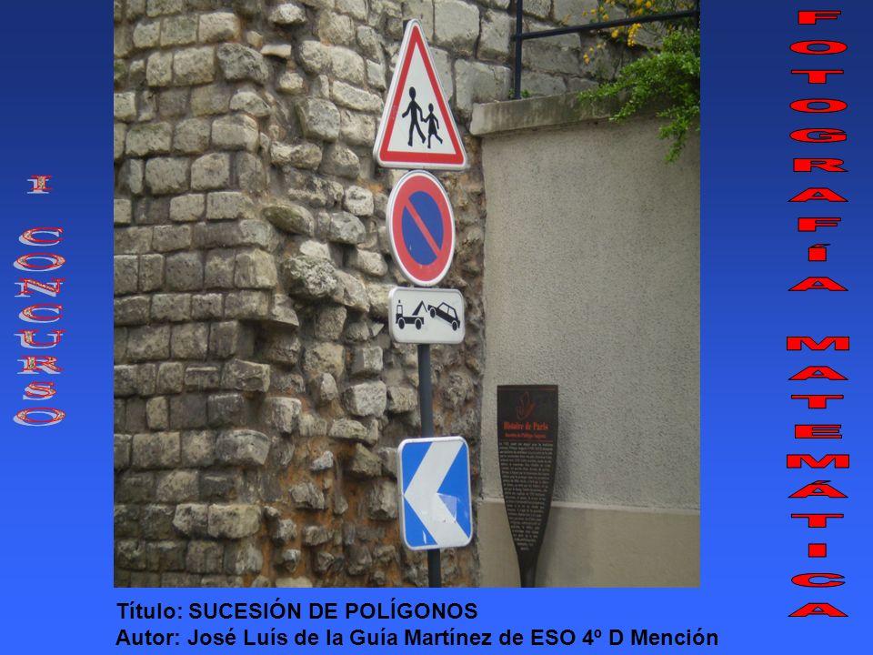 Título: SUCESIÓN DE POLÍGONOS Autor: José Luís de la Guía Martínez de ESO 4º D Mención