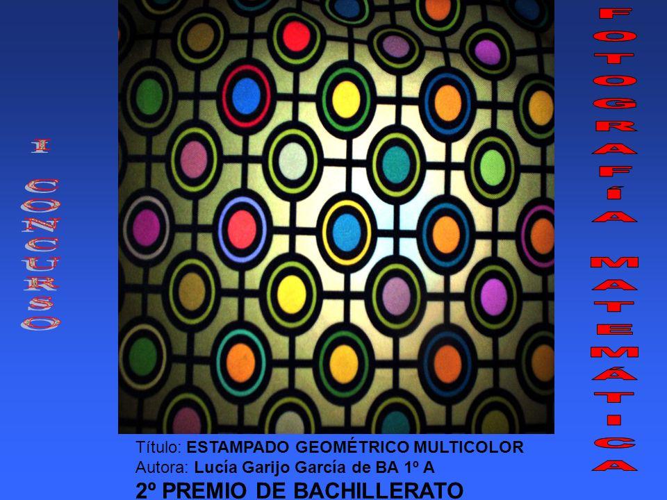 Título: ESTAMPADO GEOMÉTRICO MULTICOLOR Autora: Lucía Garijo García de BA 1º A 2º PREMIO DE BACHILLERATO