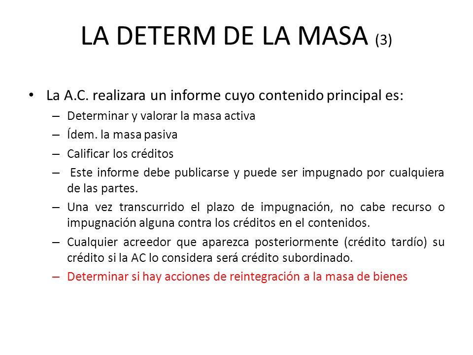 LA DETERM DE LA MASA (3) La A.C. realizara un informe cuyo contenido principal es: – Determinar y valorar la masa activa – Ídem. la masa pasiva – Cali