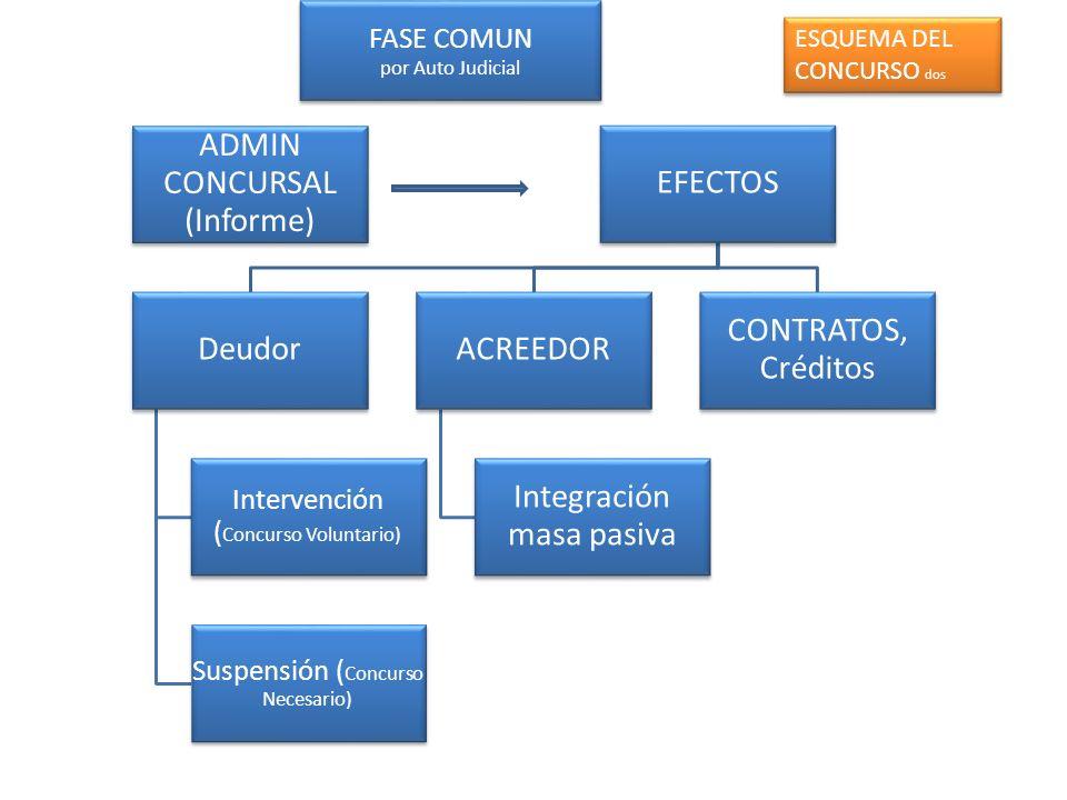 FASE COMUN por Auto Judicial ADMIN CONCURSAL (Informe) EFECTOS Deudor Intervención ( Concurso Voluntario) Suspensión ( Concurso Necesario) ACREEDOR In