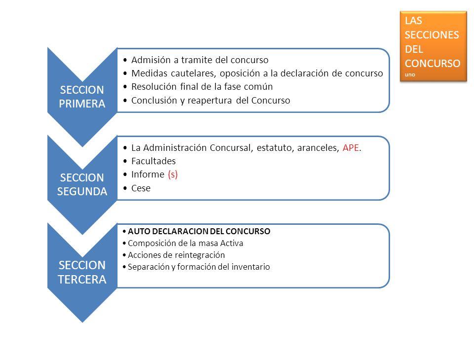 SECCION PRIMERA Admisión a tramite del concurso Medidas cautelares, oposición a la declaración de concurso Resolución final de la fase común Conclusió