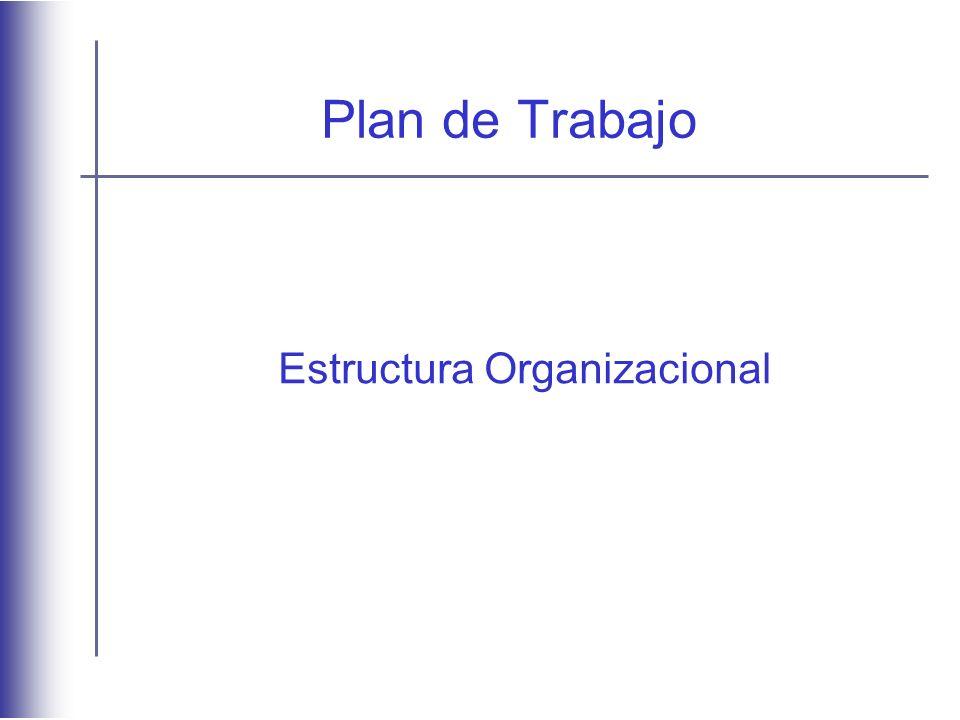 Plan de Trabajo Estructura Organizacional