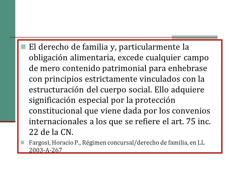 El derecho de familia y, particularmente la obligación alimentaria, excede cualquier campo de mero contenido patrimonial para enhebrase con principios estrictamente vinculados con la estructuración del cuerpo social.