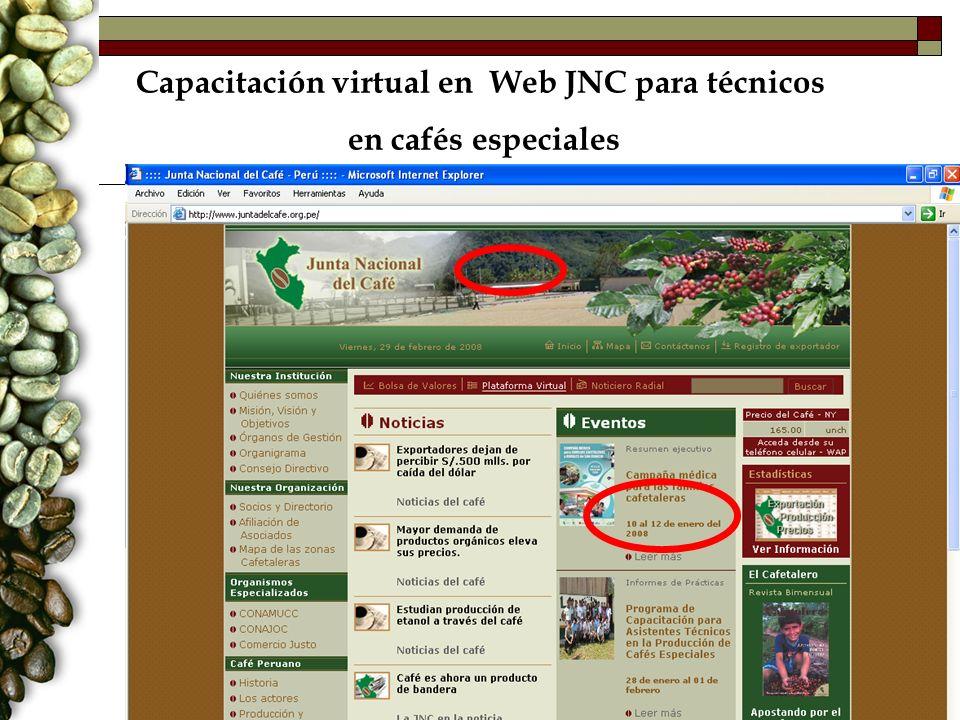 Capacitación virtual en Web JNC para técnicos en cafés especiales