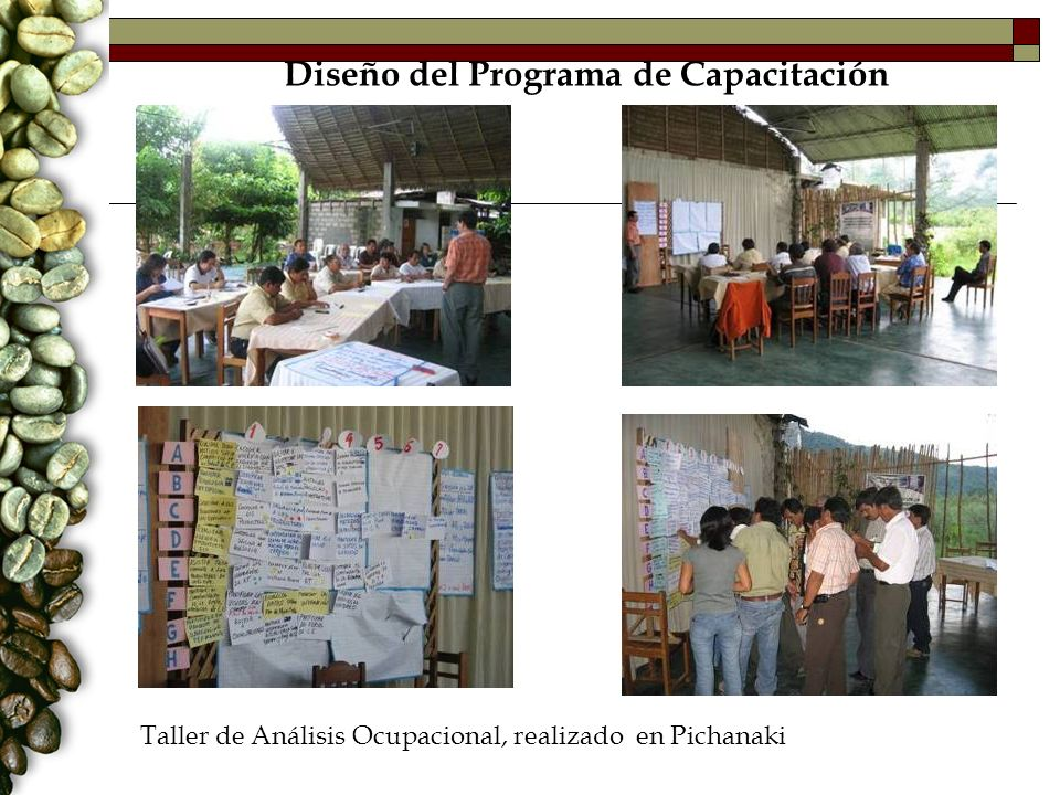 Diseño del Programa de Capacitación Taller de Análisis Ocupacional, realizado en Pichanaki