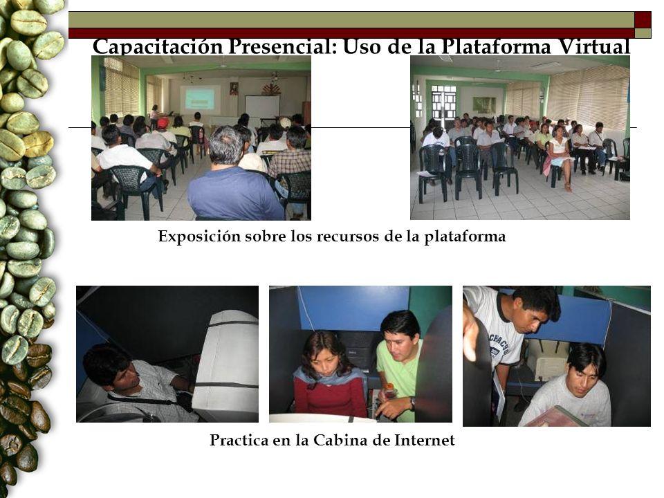 Capacitación Presencial: Uso de la Plataforma Virtual Exposición sobre los recursos de la plataforma Practica en la Cabina de Internet