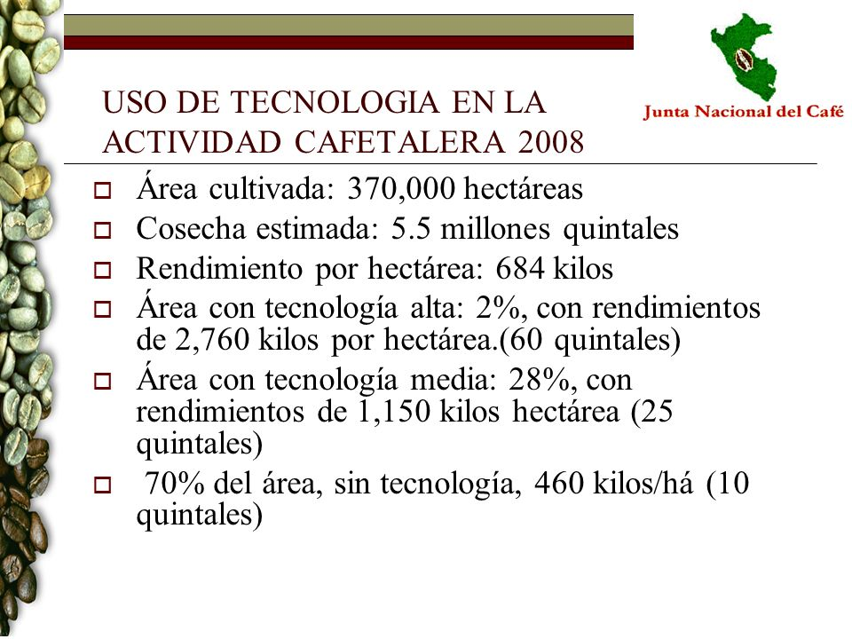 USO DE TECNOLOGIA EN LA ACTIVIDAD CAFETALERA 2008 Área cultivada: 370,000 hectáreas Cosecha estimada: 5.5 millones quintales Rendimiento por hectárea: