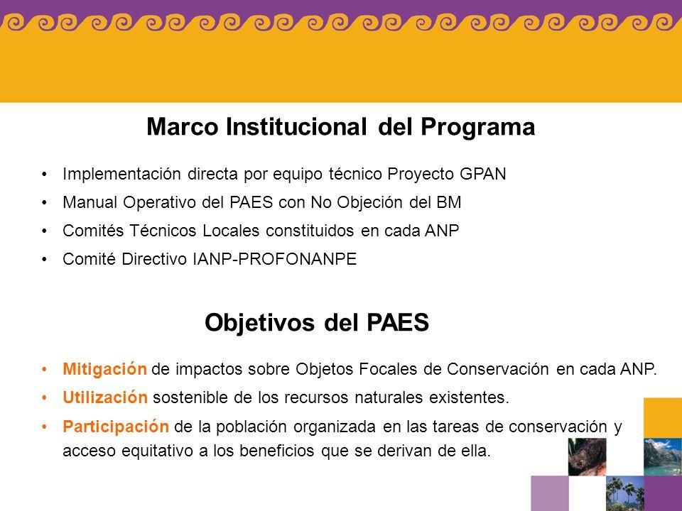 Marco Institucional del Programa Implementación directa por equipo técnico Proyecto GPAN Manual Operativo del PAES con No Objeción del BM Comités Técn