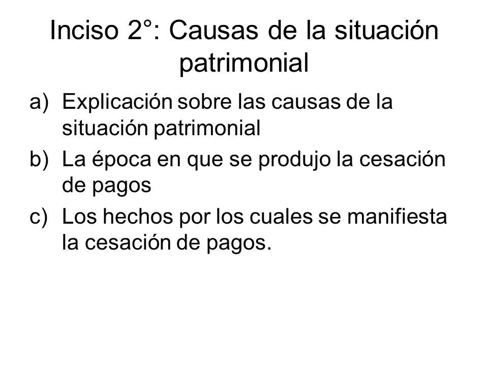 Inciso 2°: Causas de la situación patrimonial a)Explicación sobre las causas de la situación patrimonial b)La época en que se produjo la cesación de p