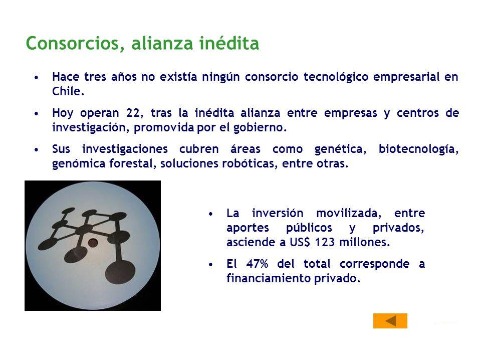 Consorcios, alianza inédita Hace tres años no existía ningún consorcio tecnológico empresarial en Chile.