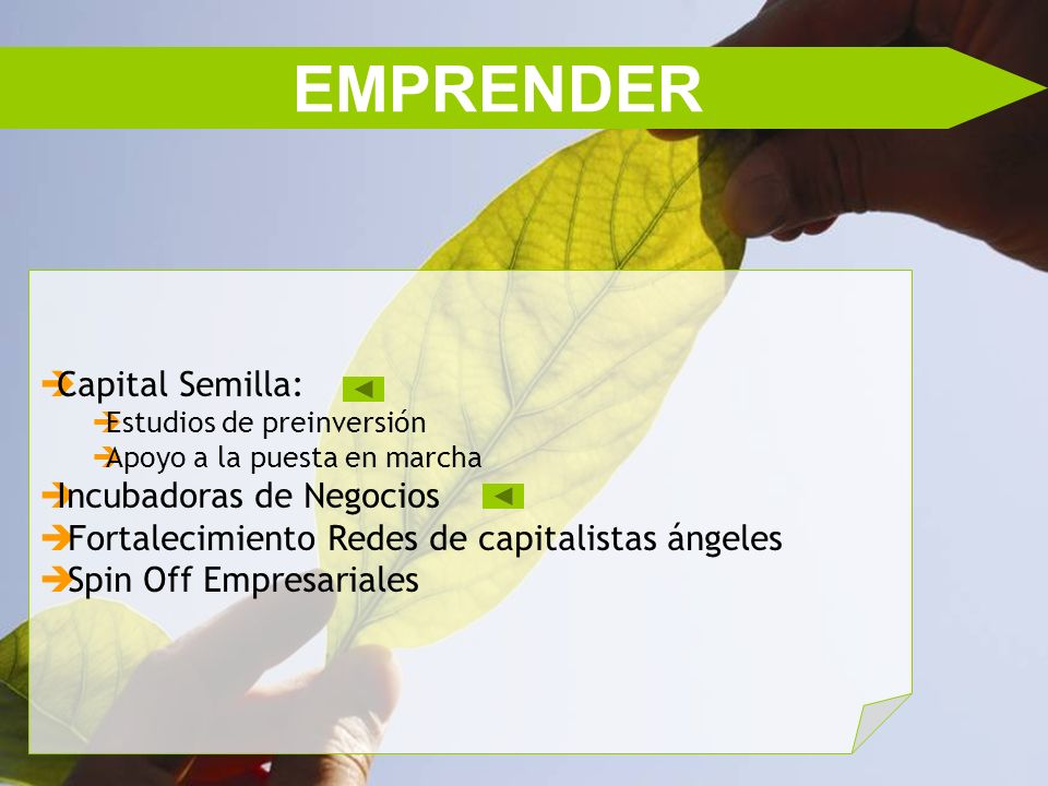 EMPRENDER Capital Semilla: Estudios de preinversión Apoyo a la puesta en marcha Incubadoras de Negocios Fortalecimiento Redes de capitalistas ángeles Spin Off Empresariales
