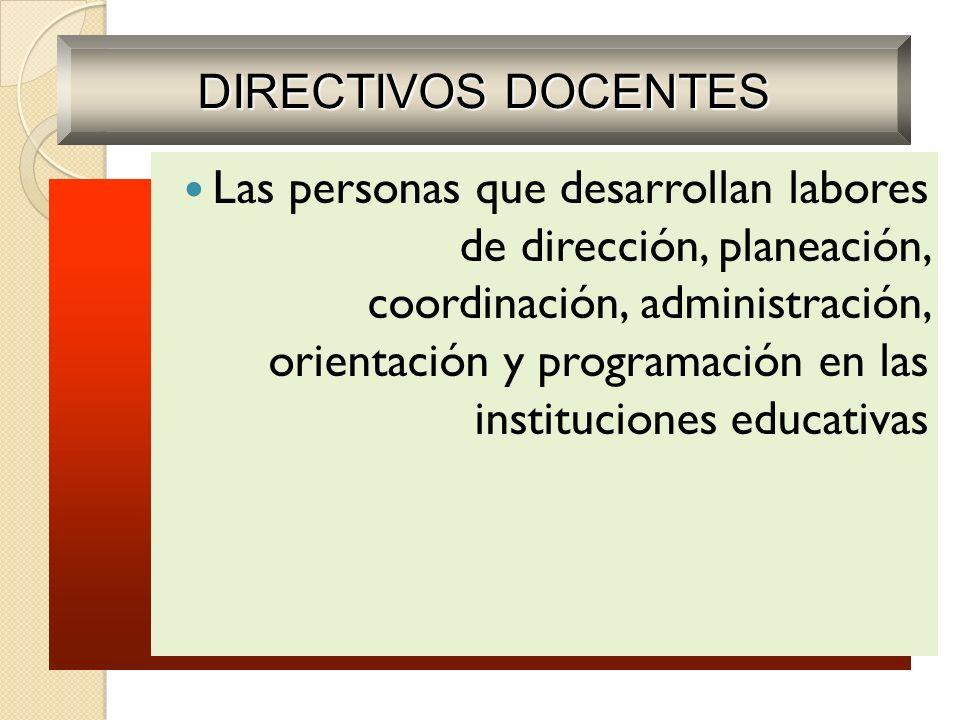 Las personas que desarrollan labores de dirección, planeación, coordinación, administración, orientación y programación en las instituciones educativa