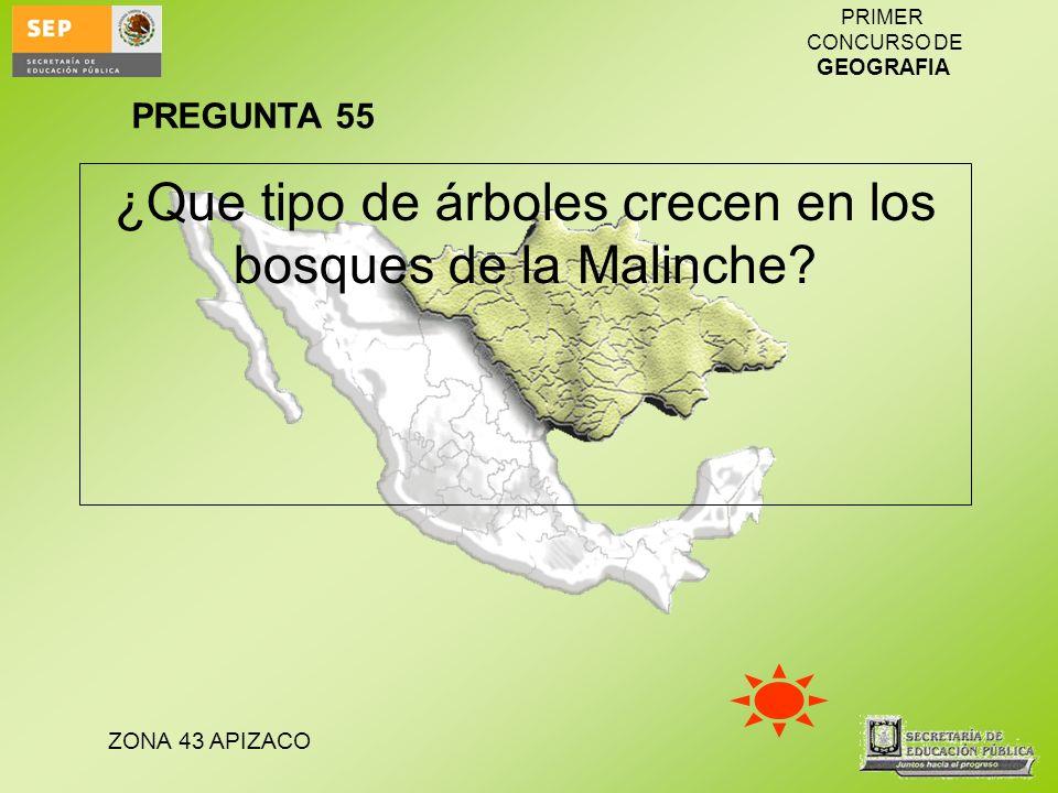 ZONA 43 APIZACO PRIMER CONCURSO DE GEOGRAFIA ¿Que tipo de árboles crecen en los bosques de la Malinche? PREGUNTA 55