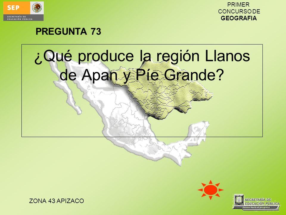 ZONA 43 APIZACO PRIMER CONCURSO DE GEOGRAFIA ¿Qué produce la región Llanos de Apan y Píe Grande? PREGUNTA 73