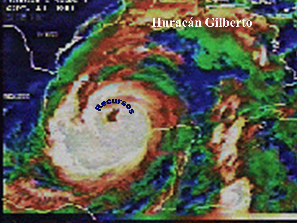 13 Huracán Gilberto