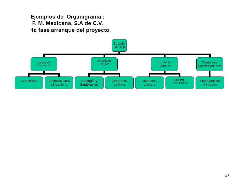 43 Ejemplos de Organigrama : F. M. Mexicana, S.A de C.V. 1a fase arranque del proyecto.