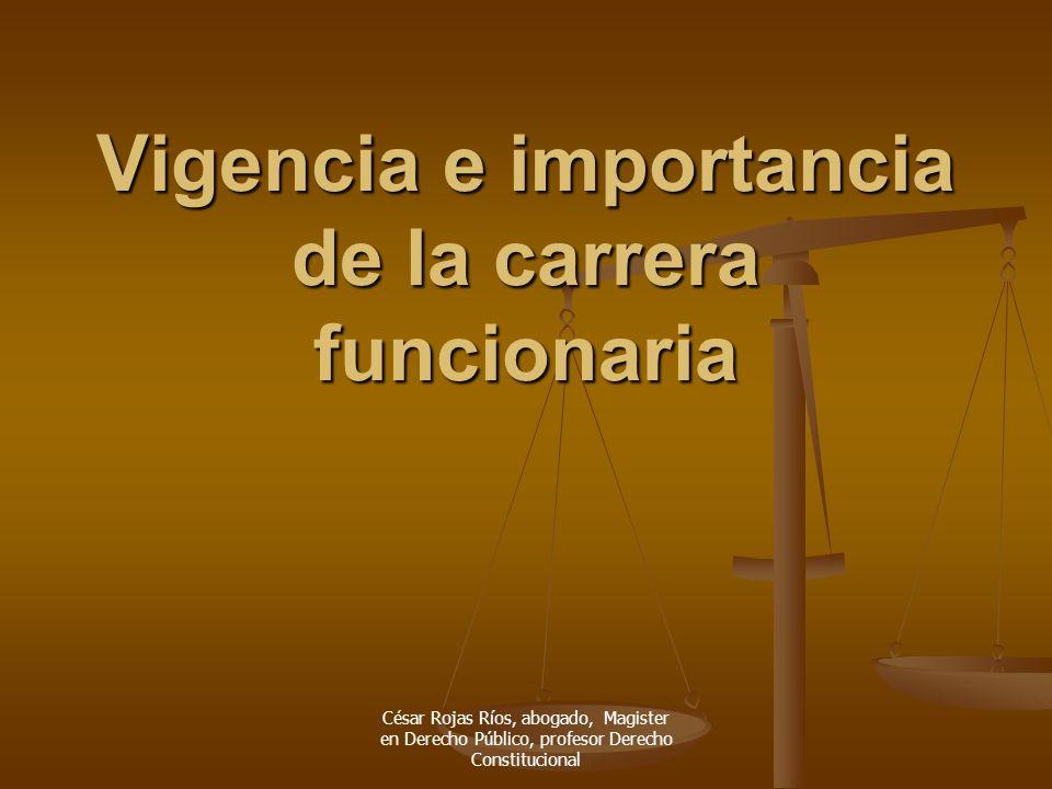 César Rojas Ríos, abogado, Magister en Derecho Público, profesor Derecho Constitucional Vigencia e importancia de la carrera funcionaria