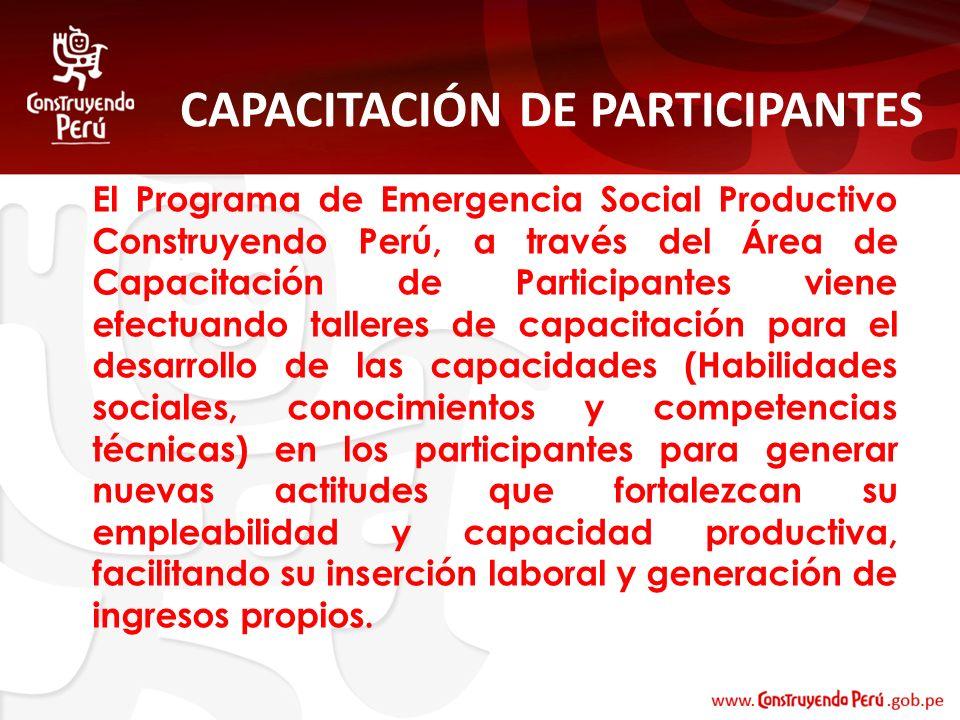 CAPACITACIÓN DE PARTICIPANTES El Programa de Emergencia Social Productivo Construyendo Perú, a través del Área de Capacitación de Participantes viene