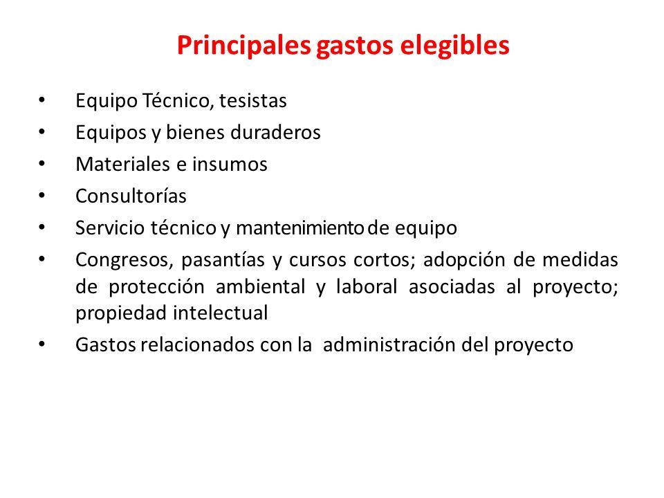 Principales gastos elegibles Equipo Técnico, tesistas Equipos y bienes duraderos Materiales e insumos Consultorías Servicio técnico y mantenimiento de