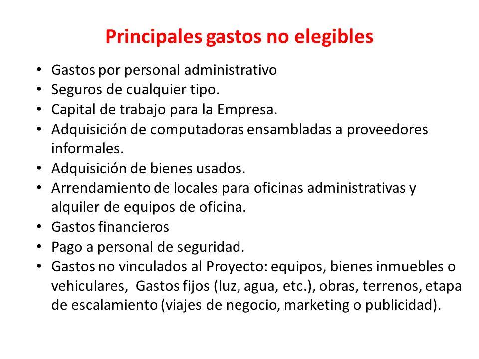 Principales gastos no elegibles Gastos por personal administrativo Seguros de cualquier tipo. Capital de trabajo para la Empresa. Adquisición de compu