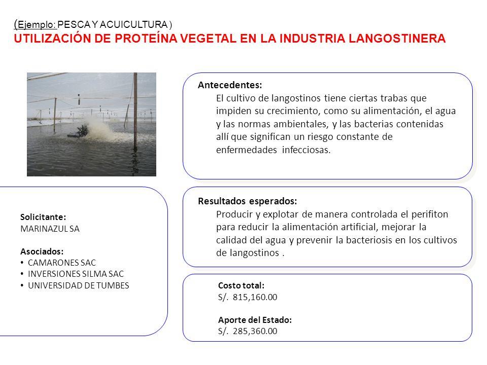 Antecedentes: El cultivo de langostinos tiene ciertas trabas que impiden su crecimiento, como su alimentación, el agua y las normas ambientales, y las