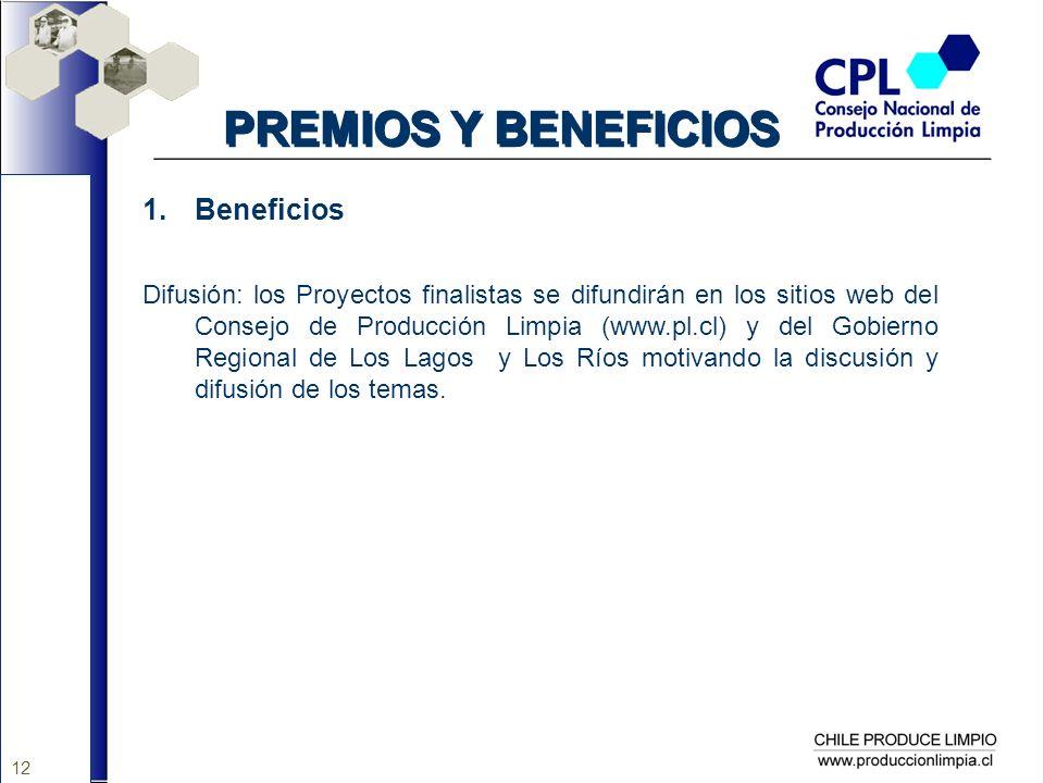 12 PREMIOS Y BENEFICIOS 1.Beneficios Difusión: los Proyectos finalistas se difundirán en los sitios web del Consejo de Producción Limpia (www.pl.cl) y
