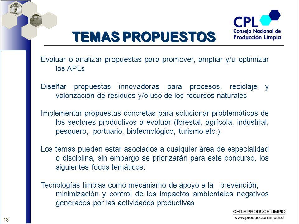 13 TEMAS PROPUESTOS Evaluar o analizar propuestas para promover, ampliar y/u optimizar los APLs Diseñar propuestas innovadoras para procesos, reciclaj