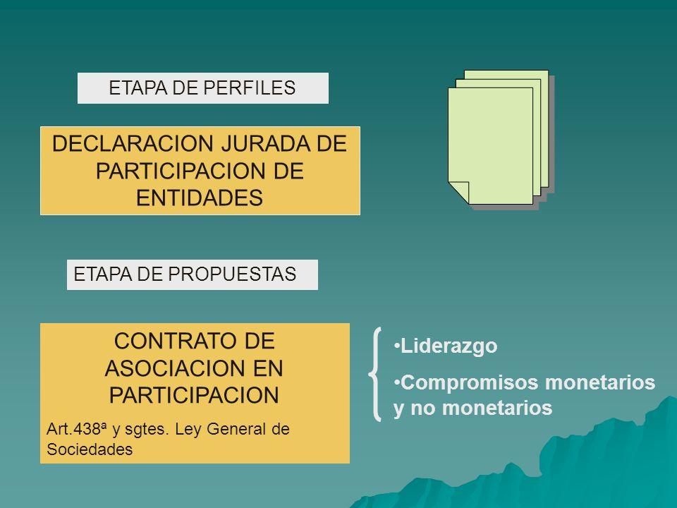 ETAPA DE PERFILES ETAPA DE PROPUESTAS DECLARACION JURADA DE PARTICIPACION DE ENTIDADES CONTRATO DE ASOCIACION EN PARTICIPACION Art.438ª y sgtes.