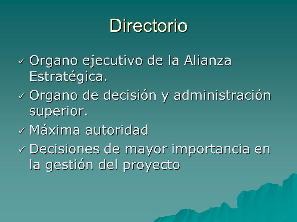 Directorio Organo ejecutivo de la Alianza Estratégica.