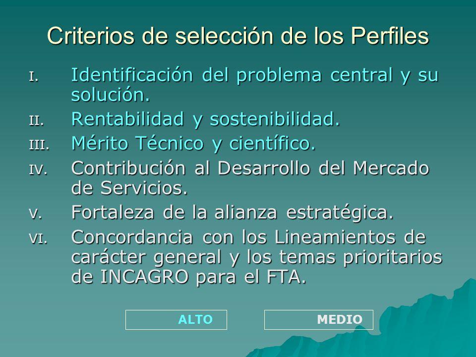 Criterios de selección de los Perfiles I. Identificación del problema central y su solución.